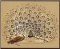 http://www.e-stamps.cn/upload/2010/10/04/1729508825.jpg/190x220_Min