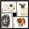 http://www.e-stamps.cn/upload/2012/06/07/1312206845.jpg/190x220_Min
